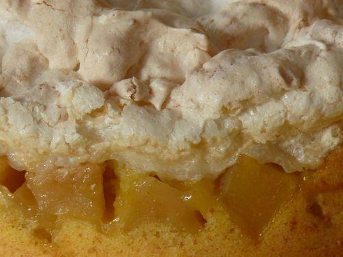 Apfelkuchen mit Kokosbaiser, Detail