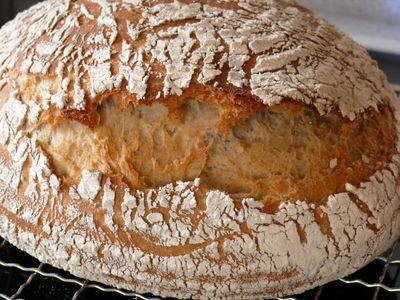 Bäcker Süpkes Schwarzwälder, Riss