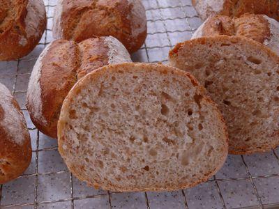Dinkel-Weizen-Hafer-Krüstchen (M), Anschnitt