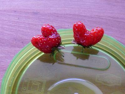Zwei Herzen im Dreivierteltakt