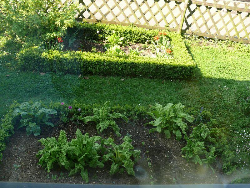 Blick aus dem Kuechenfenster Fruehling 2011_0014
