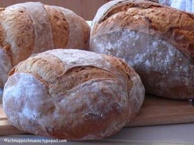 Brot_30_roggen